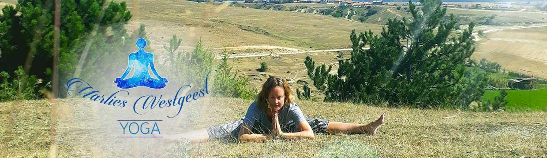 yoga-voor-ouderen-en-volwassenen